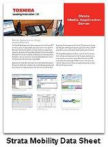 Strata Media Application Server Data Sheet